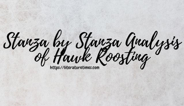 Stanza by Stanza Analysis of Hawk Roosting